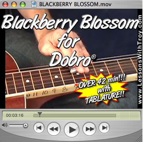 Blackberry Blossom - Bluegrass Song for Dobro®
