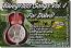 Bluegrass Songs for Dobro® Vol. 1