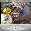 E Blues Licks - Jerry Douglas Style