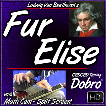 FUR ELISE - for Dobro written by Ludwig Van Beethoven