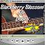 Blackberry Blossom - Bluegrass Song for Dobro®