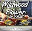 Wildwood Flower - Bluegrass Song for Dobro®
