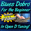 Blues Dobro® For the Beginner - In Open D Tuning