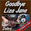 Goodbye Liza Jane - Bluegrass song for Dobro®