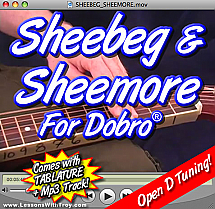 Sheebeg and Sheemore - Irish Song for Dobro®